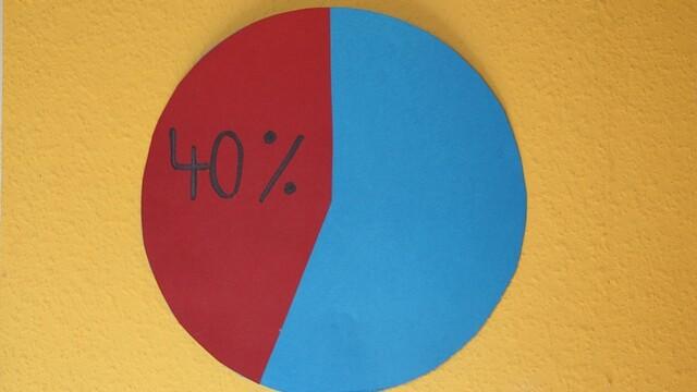 Cirkeldiagram i rött och blått